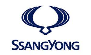 סאנגיונג לוגו