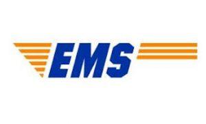 אי אמ אס לוגו EMS