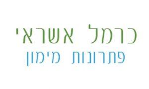 כרמל אשראי לוגו