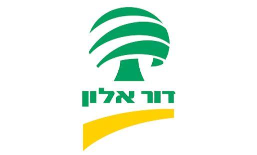 דור אלון לוגו