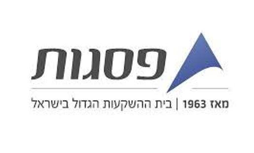 פסגות לוגו